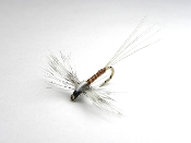 Rusty spinner, spinner fly, fly,fly tying, dry fly, fly fishing